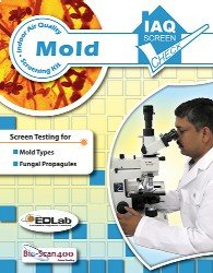black mold test kit