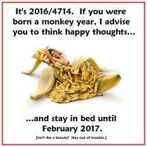chinesenewyear-2016-4714-warning_banana-bed-pinup-ap-3J