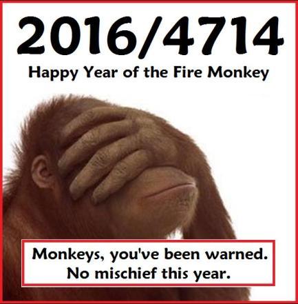 chinesenewyear-2016-4714-warning_dontlookmonkey-ap-6J