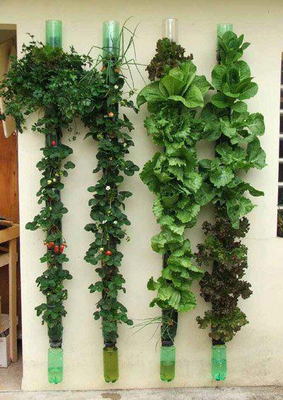 Vertical-Tube-Garden