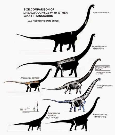 titanosaurs dreadnoughtus