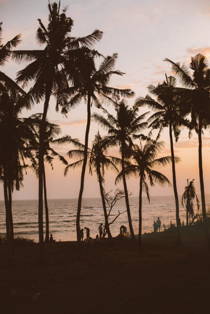 sunset on a beach with a few palm trees