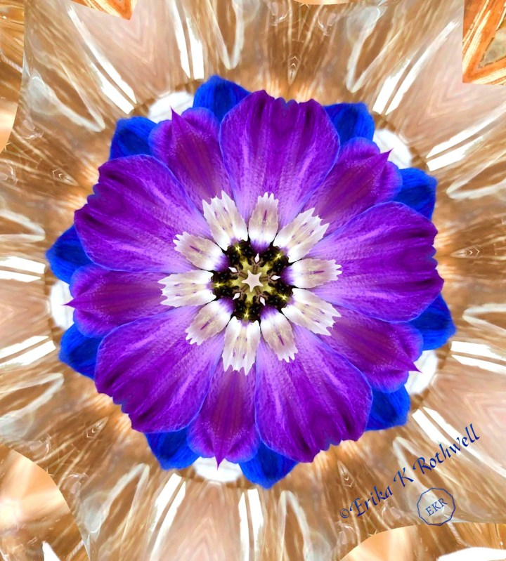 Image of purple flower as kaleidoscope image