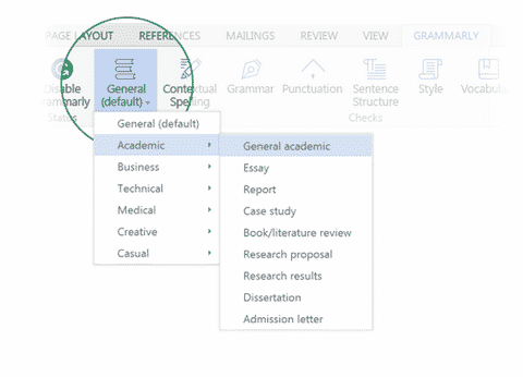 selecting the document check level in Word