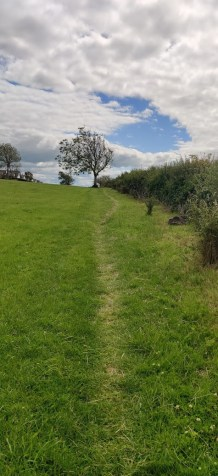 Walking across lawns, pitches and along hedgegrows to avoid people, folk went where they normally never walked, due to COVID. This was to get excercise, get out, but not be at or to cause risk. The paths, and our patterns, are fading now.