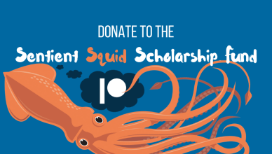 donate to the sentient squid scholarship