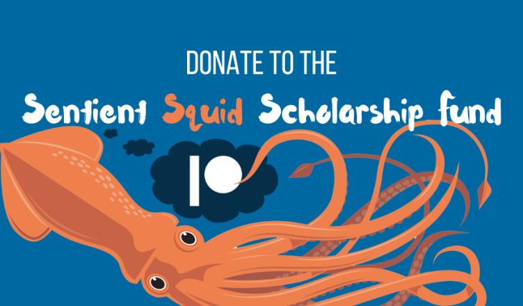 donate to the sentient squid scholarship