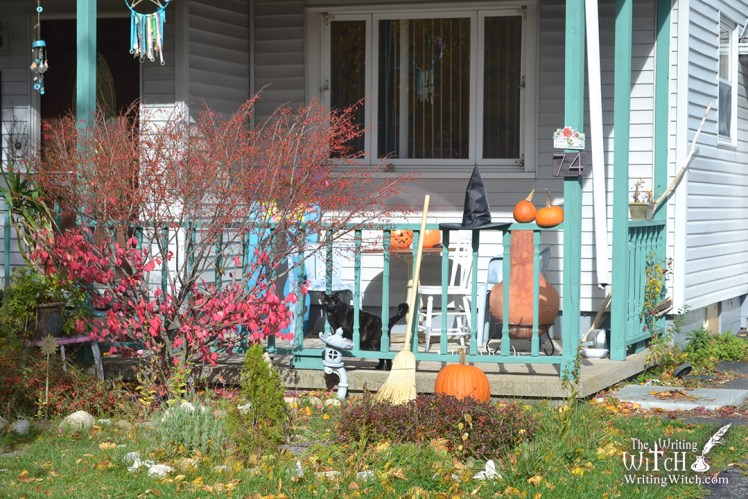 autumn house yard with pumpkins and a black cat