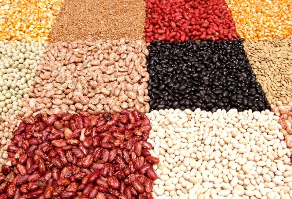 17 grains and tubers with their names in Hausa