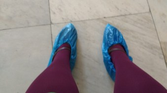 The booties protected the palace from my common feet