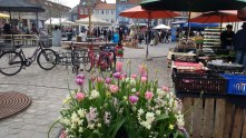 Spring flowers and the farmers' market