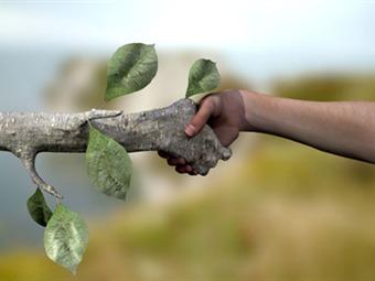 Resultado de imagen para ley ambiental