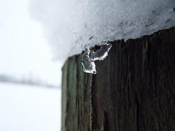 DSCF9644 ice