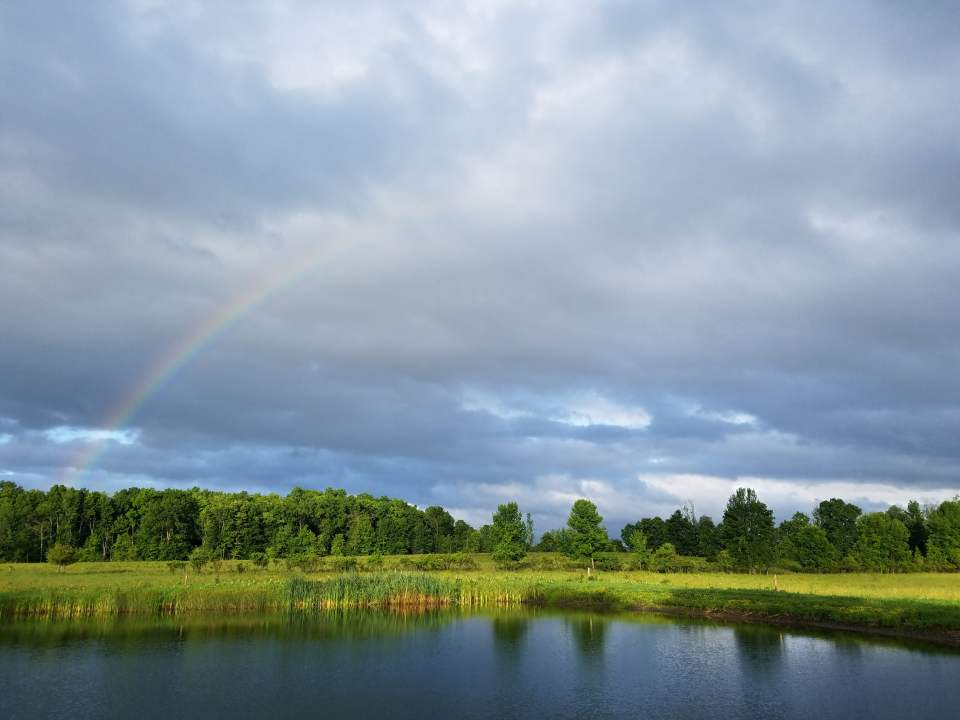 Morning rainbow over the pond in the back pasture