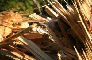 Photo of splintered wood.