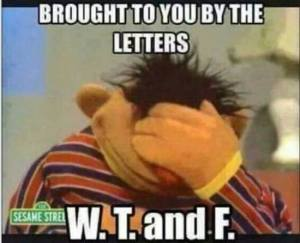 """Photograph of Ernie from Sesame Street with his head hung low and a hand over his face and the words """"Brought to you by the letters W. T. and F."""""""
