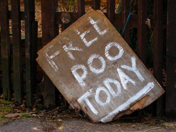 Free Poo today Wrongwayuk