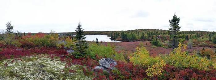 By Upper Five Bridge Lake, late September