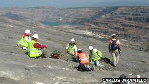 Cerrejon kömür madeninde kazı
