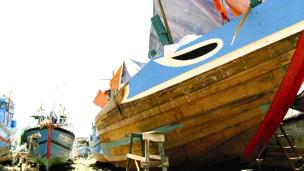 Tàu phục vụ cho ngư dân ở Hoàng Sa