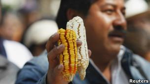Protesto de fazendeiros mexicanos contra milho transgênico. |Foto: Reuters