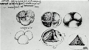 Leonardo utilizó cera caliente para hacer moldes de las válvulas del corazón.