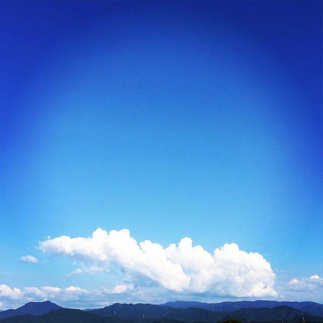 立派なイモムシ!#イマソラ #mysky #sky #fine #blue #cloud #summer #暑