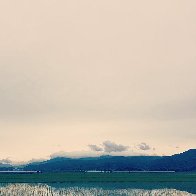 曇り模様だけど、気持ちの良い空です。#イマソラ #mysky #sky #cloudy #cloud