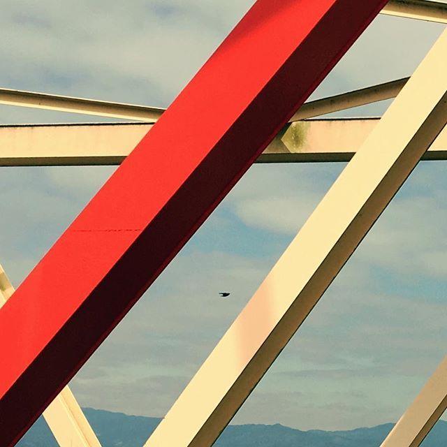 絵のような橋の上から。#イマソラ #mysky #sky #bridge #bird #fine
