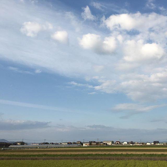 風は冷たいけど、気持ちの良い天気です。#イマソラ #mysky #sky #fine #blue #clouds #spring