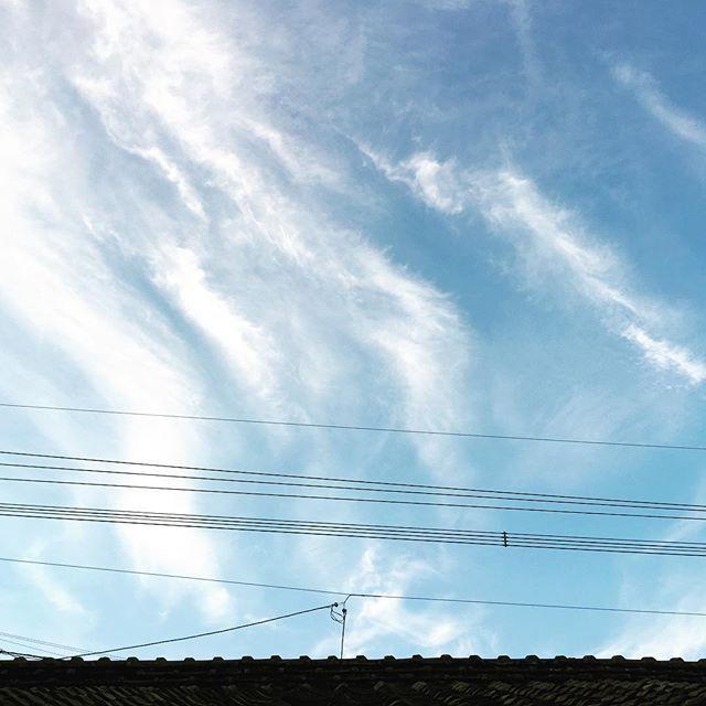 おはようございます。深夜の震災の後に皮肉なほど美しい朝です。下り坂の雲。胸が苦しい2016年4月16日の朝。地球よ静まってください。取り急ぎ家族は大丈夫です。#イマソラ #mysky #sky #fly #blue #morning #sunrise #clouds