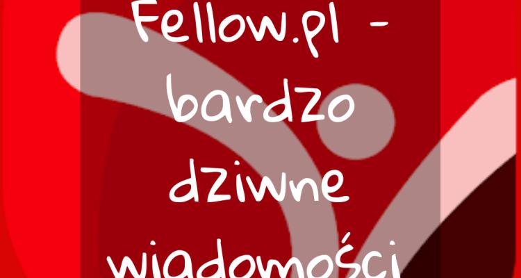 https-www-wspomnieniageja-com_fellow-pl-bardzo-dziwne-wiadomosci-miniatura