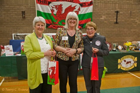 Judges Pat Butler-Holley (left) and Catherine Dodd (right) with Debbie Roberts, Show Manager. Welsh Springer Spaniel Club of South Wales Championship Show 26-03-2016, held at Chepstow, Wales.