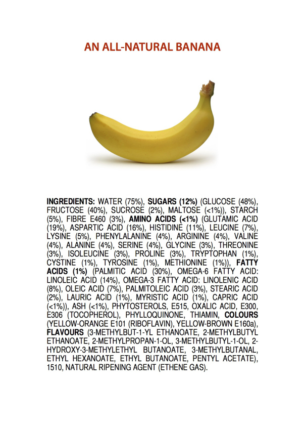 ingredients-of-a-banana-poster-4