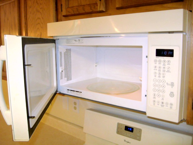 stick my hand in the microwave