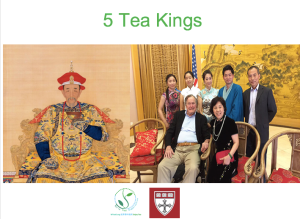 tea-kings