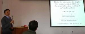 WTeaO.org Prof. Lizhi Gao