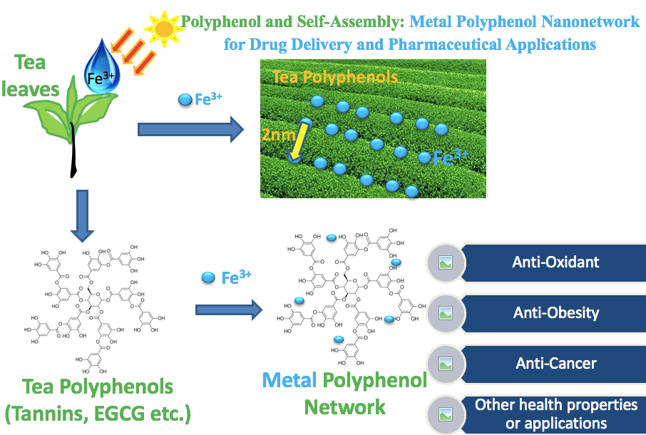 Tea Polyphenol and Nanotechnology