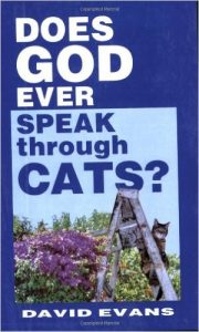 Does God Ever Speak Through Cats