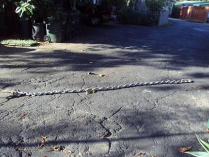 post 213 chain