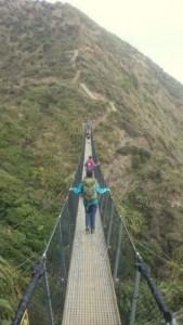 Paekakariki Escarpment Bridge