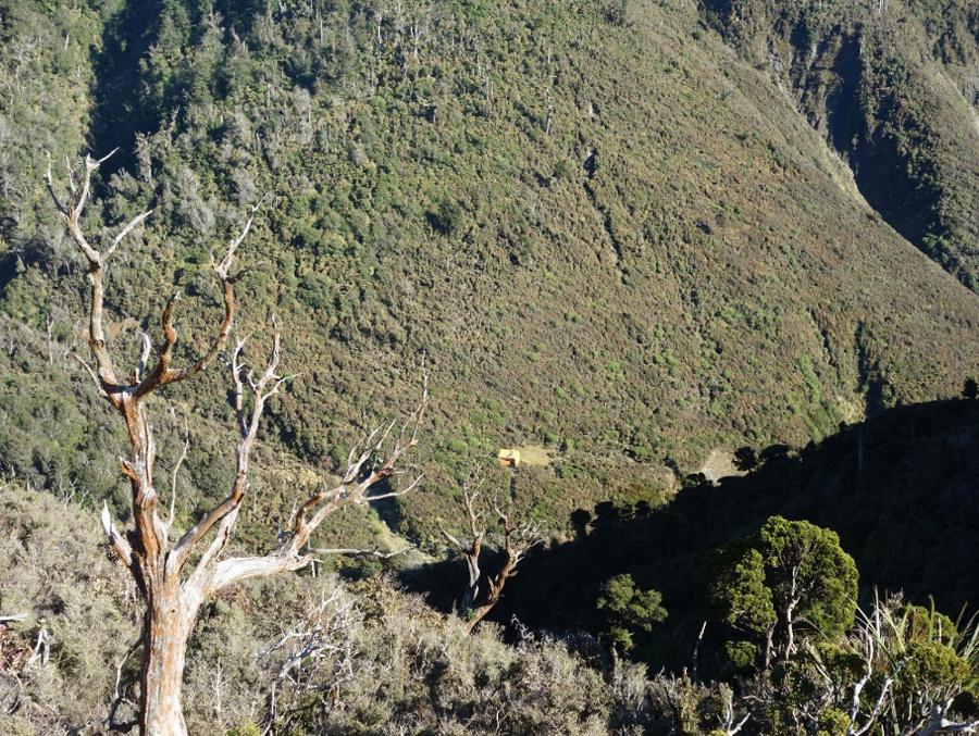Cattle Creek Trip 1