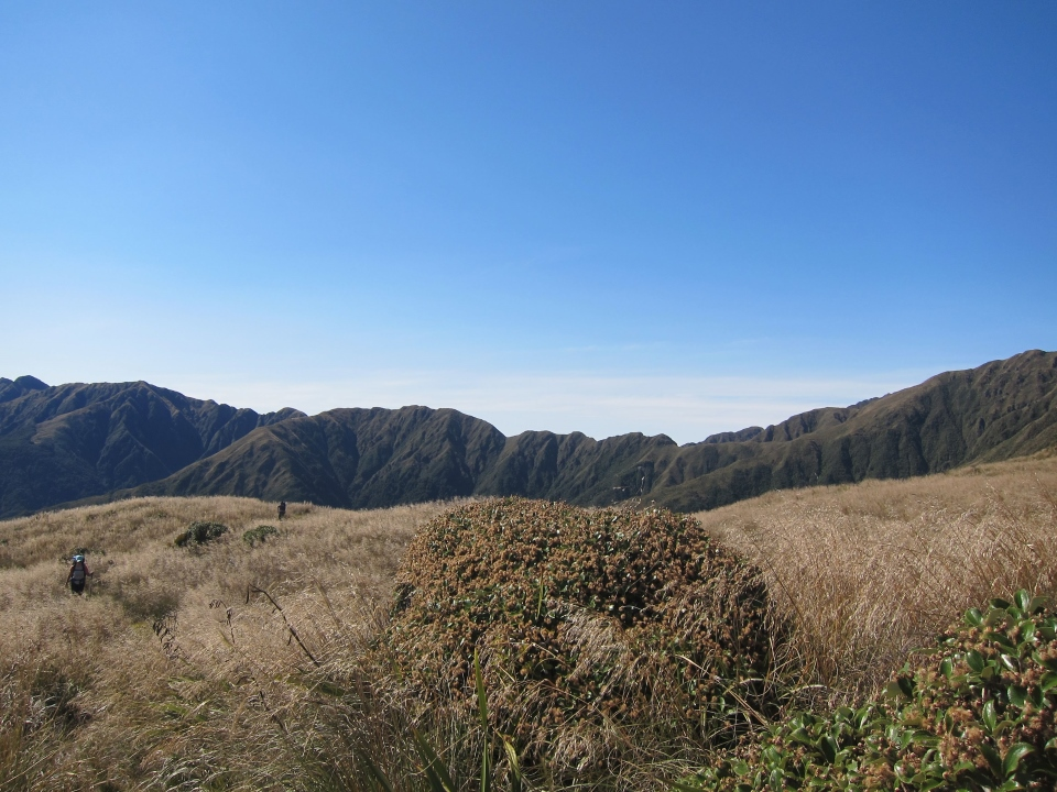 View over Tararua Ranges