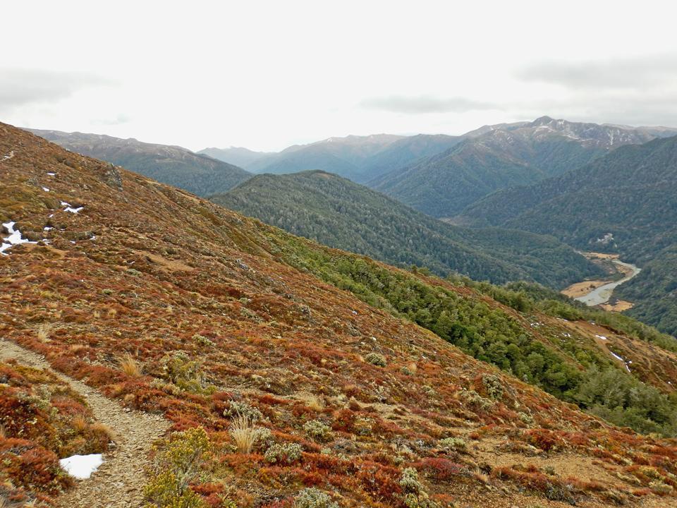 Kaimanawa Range