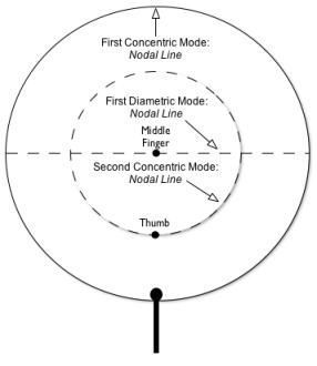 Figure 2b