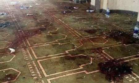Racist Australian Senator blames Muslims and immigration for the New Zealand shooting Terrorist attack