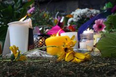 tributes left outside NZ mosques on first anniversary of shooting massacre