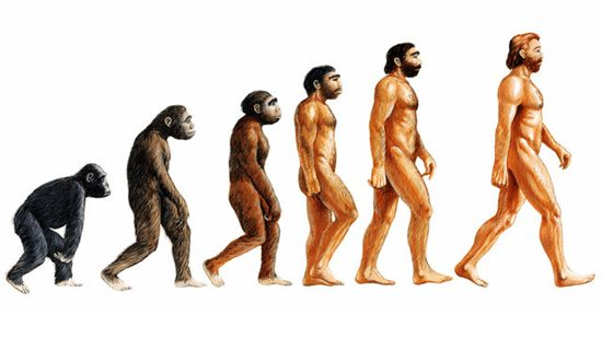 A quick guide to Darwinism - The Theory of Evolution by Natural Selection