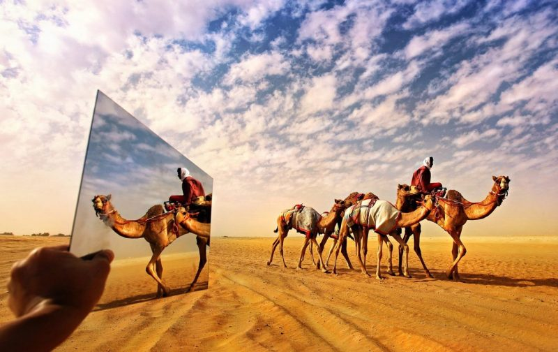 The latest News from the United Arab Emirates - Fashion, Lifestyle, Arab Business, Female Leadership, Romance, Finance and Tech, with a round up of all the news from the Middle East