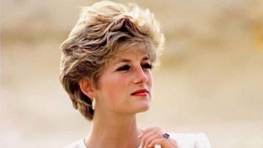 Princess Diana Martin Bashir interview Martin Bashir diana interview BBC panorama